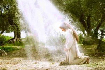 Evangelio del día – Lectio Divina Lucas 1, 26-38
