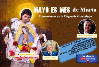 Mayo es mes de María: Virgen de Guadalupe