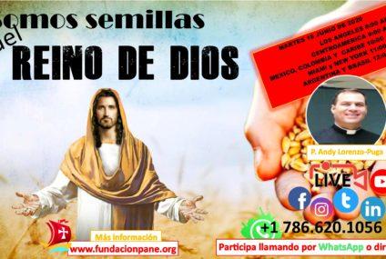 Somos semillas del Reino de Dios – Junio 16 de 2020