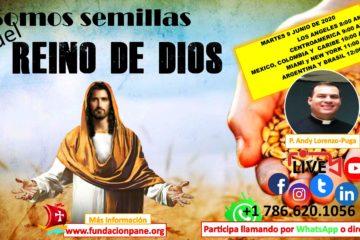 Somos semillas del Reino de Dios – Junio 9 de 2020