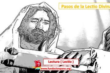 Lectio Divina: Lectura