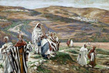 Lectio Divina Dominical XV del Tiempo Ordinario Ciclo B